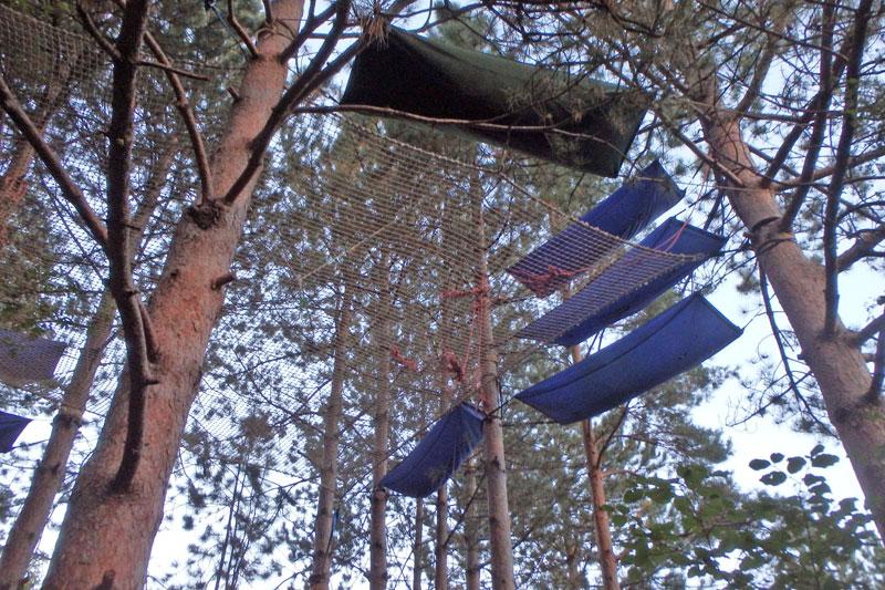 dormir dans les arbres